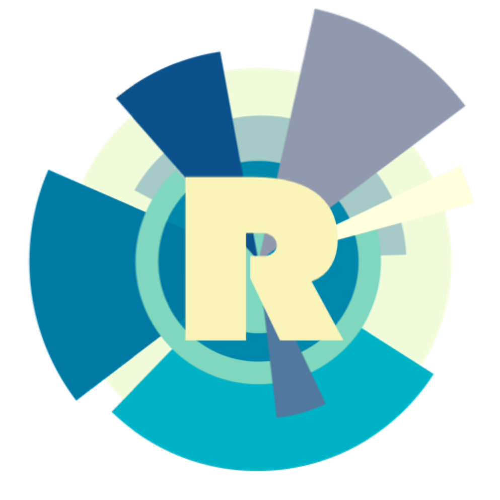 Rubik's Consulting & Analytics Logo